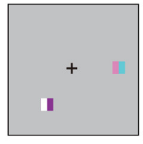 Resetting of visual working memory: the tabula rasa of a
